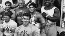Bodybuilding Culture