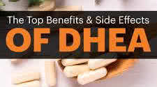DHEA and Bodybuilders