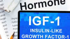 IGF-1 and Nutrition