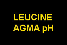Leucine Agma pH by BPi