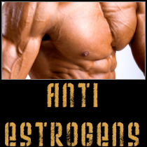 Anti Estrogen