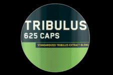 Tribulus 625 by ON